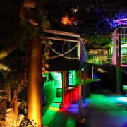 Disco Bar Jungle