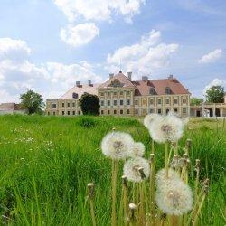 Eltz Manor