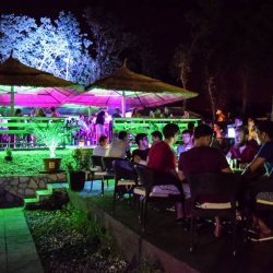 Beach Bar Siesta