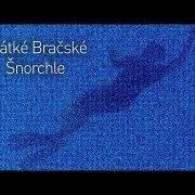 Short Brač snorkeling