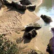 Rovinj beaches: LONE