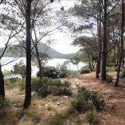 Park prirode Telašćica, Sali,Dugi otok