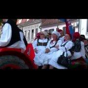Dani piva Karlovac 2013