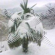 Baćinska jezera ! zima 2012