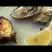 Mali Ston, Croatia - Seashell bay , Oysters