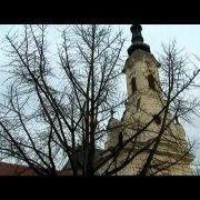 Zvona katedrala - Požega
