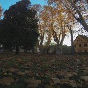 jesen...