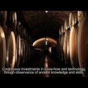 ILOK CELLARS MOVIE 2013